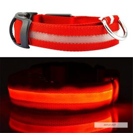 COLLIER CHIEN LUMINEUX ROUGE